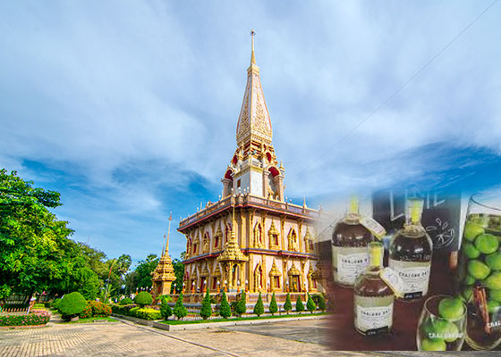 Real City Tour with Rum Cocktail